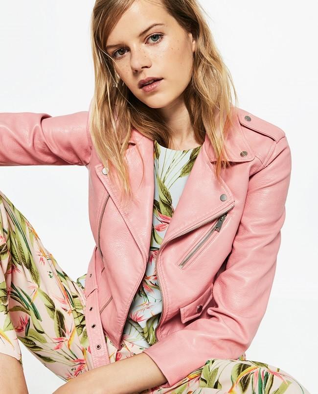 Catalog of Zara
